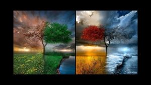 Four-seasons by Clipping-Path