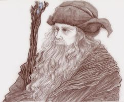 The Hobbit - Radagast by Naivara
