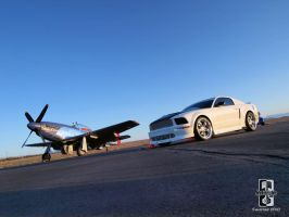 Cripes A Mighty Mustangs by Swanee3