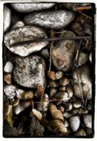 autumn on the rocks by rickster155