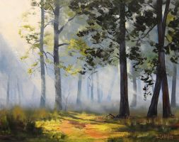 Sunrays through the forest by artsaus