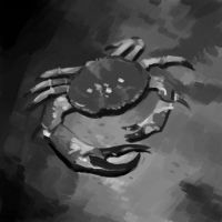 Values Study - Crab by Pseudolonewolf
