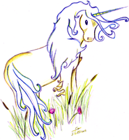 Unicorn by sofille