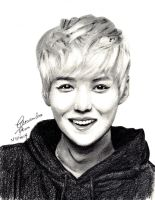 EXO Luhan Drawing by CassPoon
