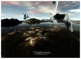 Migrations III by Ashale