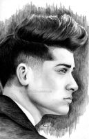 Zayn by flying-muffin
