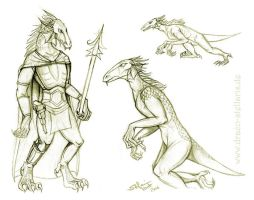 Kaleesh Evolution by Draco-Stellaris