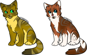 Cat Designs by SpottedAdopts