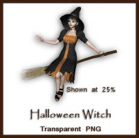 Halloween Witch by shd-stock