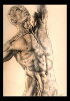 Figure Study - Michael by Suspicise