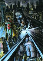 Batman Robin ATC Colors by DKuang
