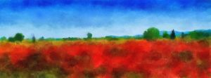 Field of Poppies by fmr0