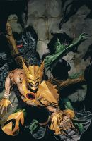 Savage Hawkman cover 4 actual by DeevElliott