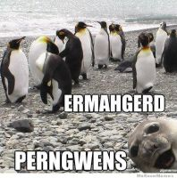ERMAHGERD. by Shiloh-Is-Here