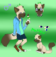 Mathew ref sheet .:2013:. by Letipup