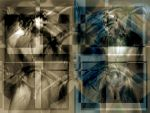 Duality by apres-image