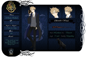 LF  Ravenclaw - William by chaisuke