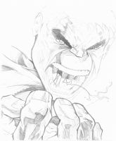 Hulk Sketch by stanmx