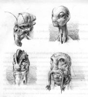 Alien Sketches 01 by ISignRob