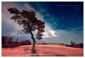 dancing tree by werol