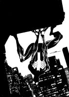 Spider-Man BW by Cinar