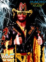 Randy Savage Promo by deviantfafnir