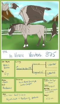 875 TFR In Venere Veritas ** by TsonianFieldsRanch
