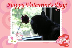 Valentine card 1 from Dusty by jenny-in-ga