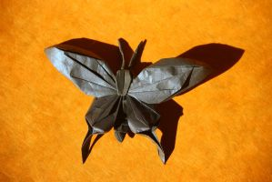 Papillon3 by origamaniac