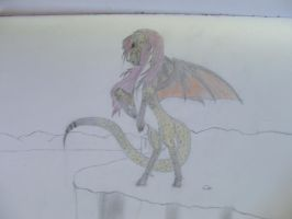 dragon species 4 by crownvetchponylover9