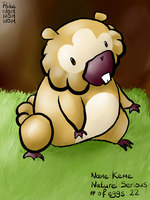 Shiny Bidoof by PokeNOMNOMNOM