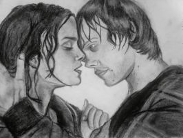 Ron and Hermione Kiss DH part2 by dasimartinez