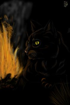 Magic Black Cat by MorokRaven