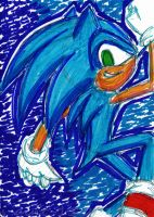 .:SONIC:. by theOrangeSunflower