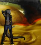 C:.Fires in the dunes by Drachorn