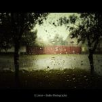 ...Rain... by bogdanici