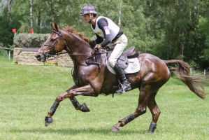 3DE Cross Country Full Speed Galop Series by LuDa-Stock