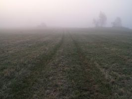path in mist.01 by akinna-stock