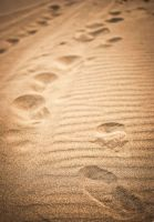 Steps on the sand by guidoneko