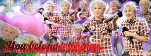 Niall  Horan  FB  cover by JoDirectioner