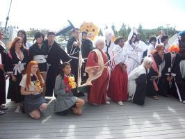 Bleach Group Pic 1 by JayPrower
