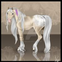 Appaloosa by Llirika