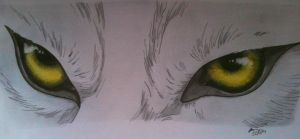 Kiba's wolf eye's by Xx-Sado-xX