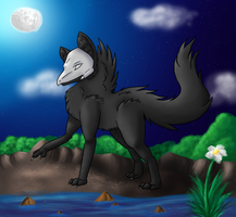 CP: Nocte by FeatheredSoap