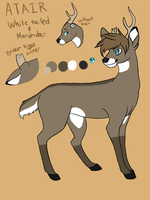 Atair Reference Deer OC by captainhomo