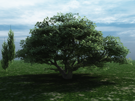 3D Background Blue by Anya-Stock