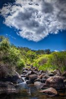 John Forrest National Park // 1 by Doom-Skull