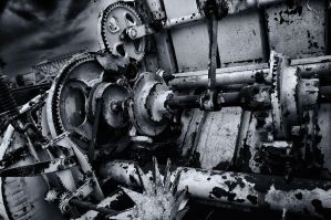 welcome to the machine by vw1956