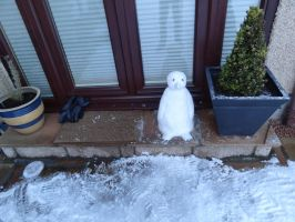 Penguin on the Doorstep by sheepgoesmeep