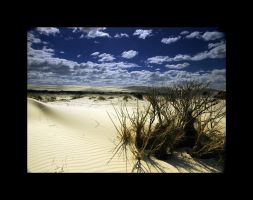 Dunes by VisionsPrelude